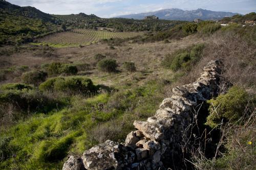 Vigni e MontiContra Quadrada - Cumunu di MontiVigni i'lalturi di Monti; chi accultu, stazzi abbandunati; in fundu li monti di Limbara