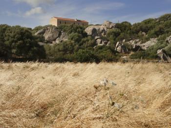 La casa a palazzu Localitài SP115/Monti Mazzolu - Cumunu di Alzachena Campi di fenu siccu e stazzu a palazzeddu