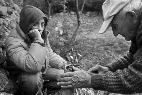 Babbu e Fiddola Località Balaiana, Stazzu Santu Linaldu - Comune di Luogosanto  Padre insegna alla figlia l'innesto dell'olivastro nell'orto invernale
