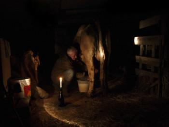 A lume di candela Località Silonis - Comune di Luras  Interno stalla, mungitura dell'alba