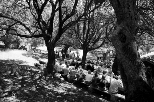 A l'umbra Località Santa Reparata - Comune di Luogosanto  Il pranzo