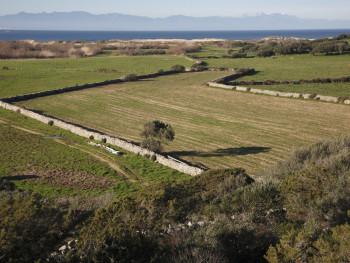 Vasche da bagno #2  Barrabisa, Porto Puddu e Foce del Liscia - Comuni di Palau e Santa Teresa Gallura  2 mesi dopo l'aratura, bassa valle del Liscia. Sullo sfondo la Corsica