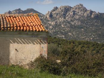 Lama Monte Pino, Località Muddizza Piana - Comune di Olbia Stazzi Muddizza Piana. Stazzo  abbandonato. Particolari di resti di decorazioni murarie, sullo sfondo Cugnana