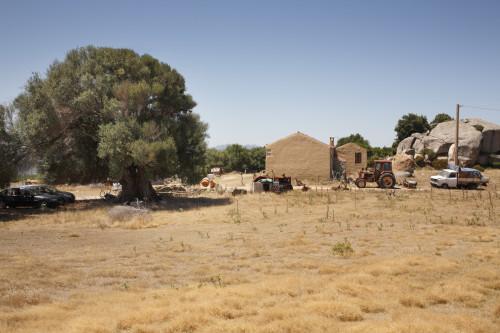 Mimesi  Località Monticanu - Comuni di Palau e Arzachena.  Stazzu Monticanu. La casa, olivastro millenario e mezzi meccanici